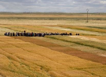 Más de 500 agricultores participan en las Jornadas de Campo de Agropal