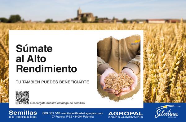 """VII Congreso de Cereal: """"EL FUTURO DEL CEREAL EN CASTILLA Y LEÓN."""