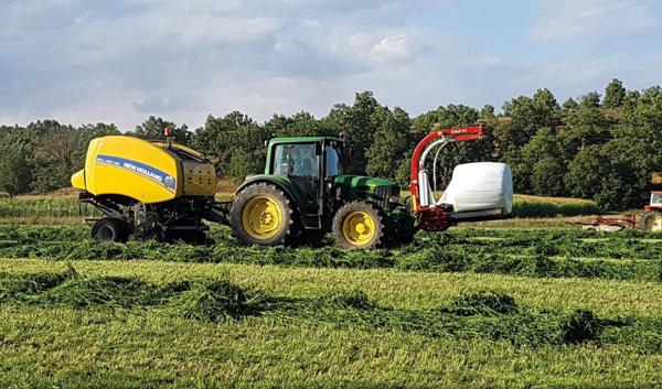 La nutrición con silo en ovejas de leche