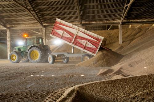 Las entregas de cereales por  los socios a la cooperativa triplican las de la campaña pasada