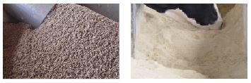 Cebo de terneros: ¿harina o granulado?
