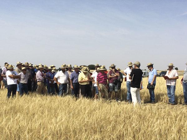 Los socios participaron un año más en las jornadas de campo de Agropal