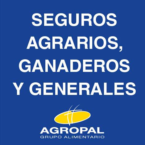 Novedades en el departamento de seguros Agropal
